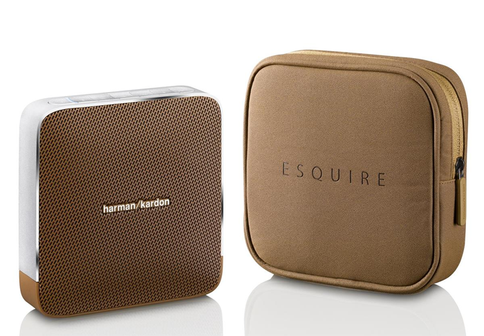Enceinte portable design